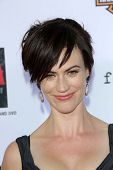 Maggie Siff at the