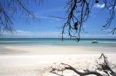 Shark Spit - Moreton Island