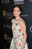 Allison Williams at the BAFTA Los Angeles TV Tea 2013, SLS Hotel, Beverly Hills, CA 09-21-13