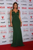 Daisy Fuentes at the 2013 NCLR ALMA Awards Press Room, Pasadena Civic Auditorium, Pasadena, CA 09-27