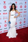 Edy Ganem at the 2013 NCLR ALMA Awards Arrivals, Pasadena Civic Auditorium, Pasadena, CA 09-27-13