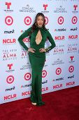 Fernanda Romero at the 2013 NCLR ALMA Awards Arrivals, Pasadena Civic Auditorium, Pasadena, CA 09-27