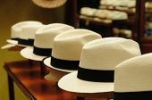 picture of panama hat  - Ecuador  - JPG