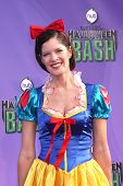 Michelle Stafford at the Hub Network First Annual Halloween Bash. Barker Hangar, Santa Monica, CA 10-20-13