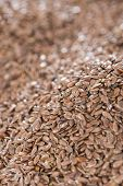 Linseed Background Image