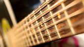 Macro Of Acoustic Guitar