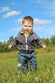 pic of hayfield  - Little handsome boy goes at green meadow in summer sunny day
