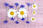 Beautiful wildflowers on wooden background