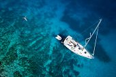 stock photo of bird paradise  - amazing view to yacht - JPG