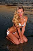 Sexy woman in bikini posing on the beach during sunset time.