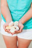 Close up of woman hand holding variety of beautiful sea shells