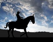 silhouette of a rider on a horse in the sunset
