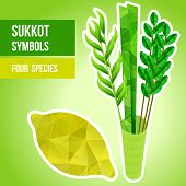 stock photo of sukkoth  - Four species  - JPG