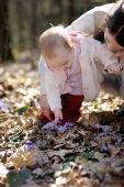 Little Girl Touching Hepatica Flowers