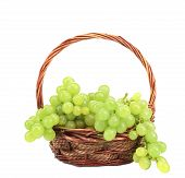 Green grapes in a wicker basket.