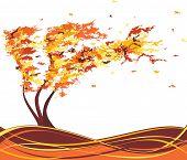 Autumn Grunge Tree In The Wind. Vector