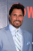 LOS ANGELES - JUL 17:  Don Diamont at the CBS TCA July 2014 Party at the Pacific Design Center on Ju