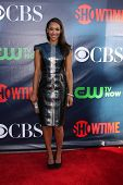 LOS ANGELES - JUL 17:  Candice Patton at the CBS TCA July 2014 Party at the Pacific Design Center on