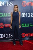 LOS ANGELES - JUL 17:  Renee Bargh at the CBS TCA July 2014 Party at the Pacific Design Center on Ju