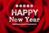 Happy New Year Message With Red Rose