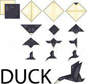 Illustrator of Duck