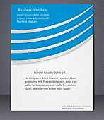 Business Brochure With Elements Of Lines