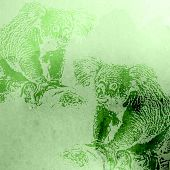 vector vintage illustration of green watercolor koala bears on t