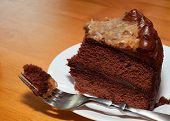 Cake On The Fork