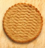 Round Biscuit On Stained Background
