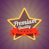 Badge with star and premium quality label on dark background wit