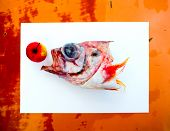 Fish head.