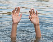 Female hands in the water