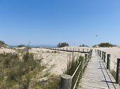 Walkway On The Beach. Ebro River Delta.