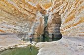 Beautiful gorge in the Negev desert. Ein Avdat Canyon, a female photographer taking pictures scenic landscape