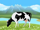 picture of cow  - Vector cow and rural meadow landscape - JPG
