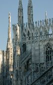 Statues Of The Duomo In Milan