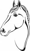 black and white outlines of horse head in skertch style