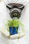 foto of protective eyewear  - Person in white protective suit and holding plant - JPG