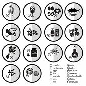image of grayscale  - grayscale set of typical food alergens for restaurants eps10 - JPG