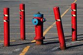 Red Hydrant And Guards