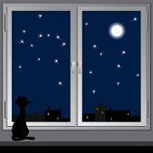 Nightly window and cat. Vector.