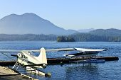 Sea Planes At Dock In Tofino, Vancouver Island, Canada