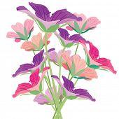 Flor. Ilustração vetorial.