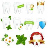 Tooths Set