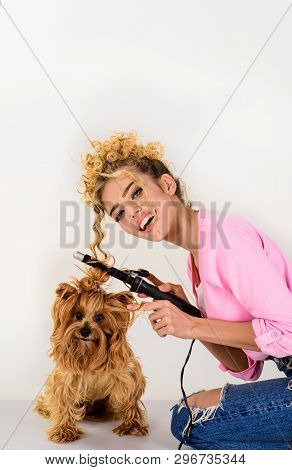 poster of Grooming. Salon For Dogs. Petshop. Dog Salon. Beauty Salon For Animals. Grooming Master Making Dog H