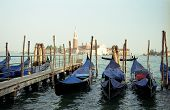 Venice Harbor With Gondolas