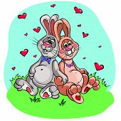 Two cute rabbits in love, vector drawing
