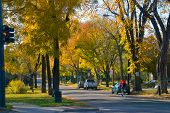 Denver City Street In Fall
