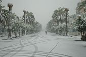 San Benedetto del Tronto covered with snow