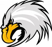 Eagle Mascot Head Vector Graphic